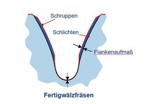 Fertigwalzfrasen_2